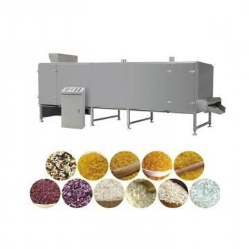 India Market Fortified Nutritional Artificial Rice Re-Shaping Rice Machine Extruder