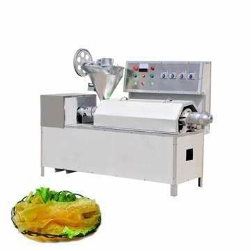 Large Capacity Continuous Frozen Pork Meat Thawing Machine for Food Factory