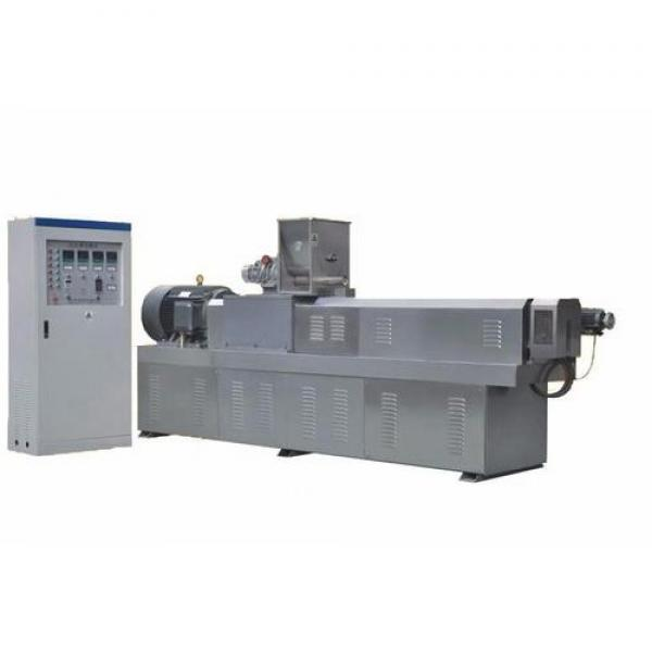 Lanty Snack Bar Twin Screw Extruder with Cheap Price #1 image
