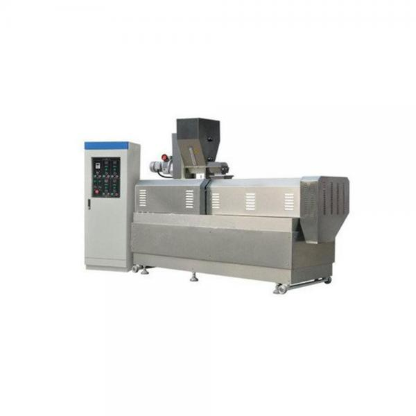 Dayi Frying Puffed Snack Food Extruder Machine Project Production Line #3 image