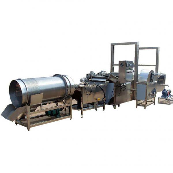 Manufacturing of Commercial Potato Chips Making Frying Equipment #1 image